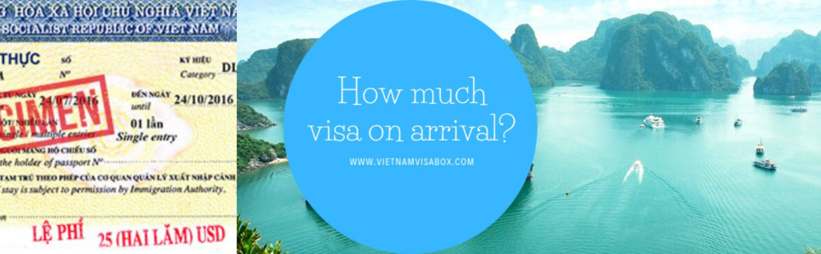 How much visa fees